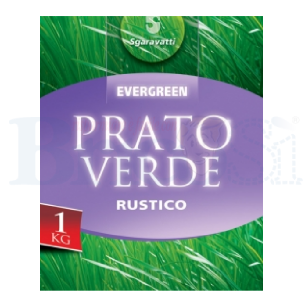 """1 kg di TAPPETO ERBOSO /"""" Prato Facile /"""""""